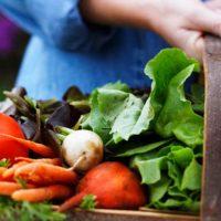 خواص چند نوع سبزی خوشمزه | غذای مورد علاقه